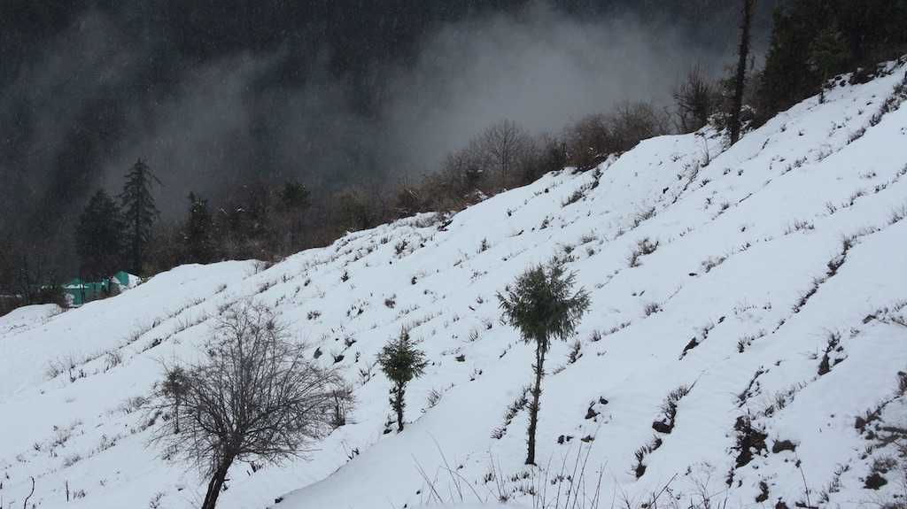 Snow fall in Hills of Himachal Pradesh